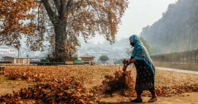 autumn-in-kashmir