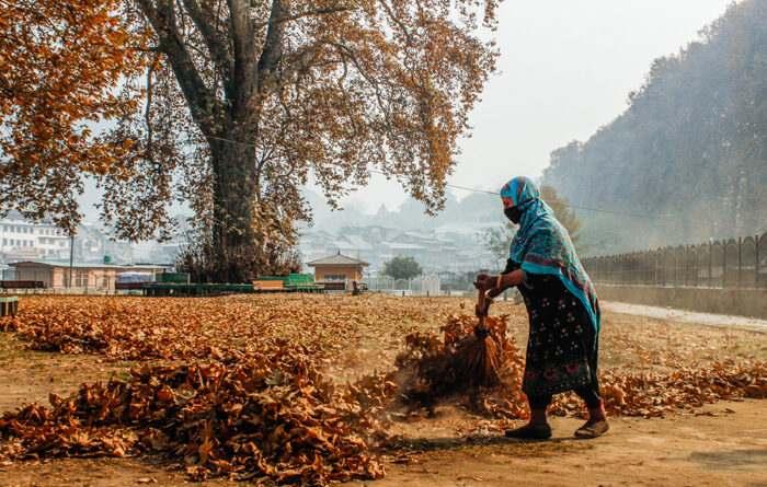 autumn-in-kashmir