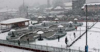 A-view-of-snow-covered-park-during-first-major-snowfall-in-Srinagar-Umar