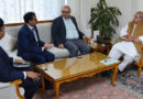 Team of TATA Group meets Governor